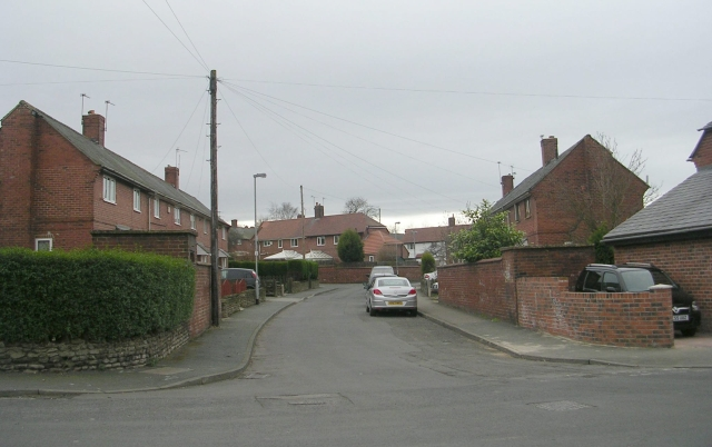 Beech Tree Road - Little Lane