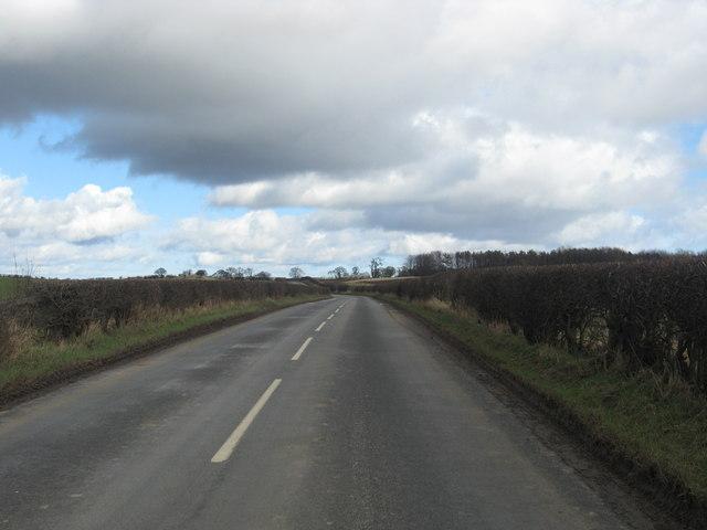 A country road near Whitmuirhaugh Farm