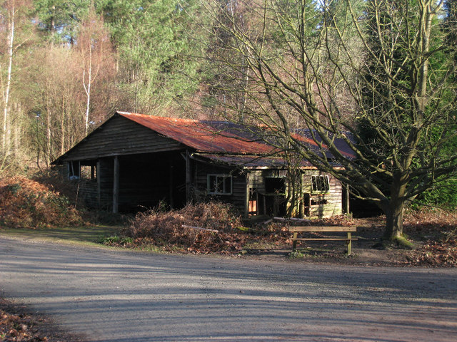 Derelict Foresters Building at Bedgebury Forest