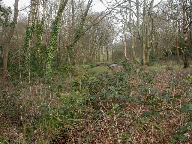 Alderney, Bourne Valley Park