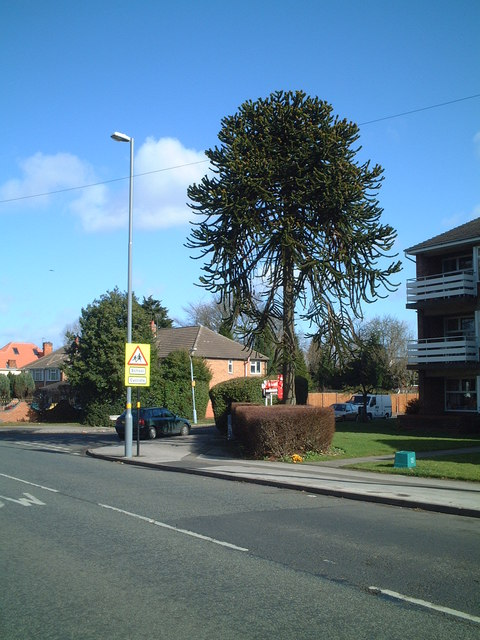 Corner of Fernside Gardens and Yardley Wood Road
