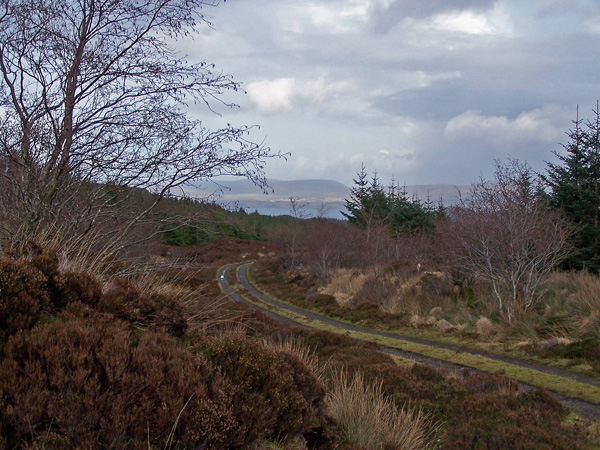 Forestry road, Greshornish Forest