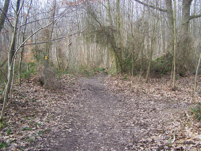 Footpath junction in Abbey Wood