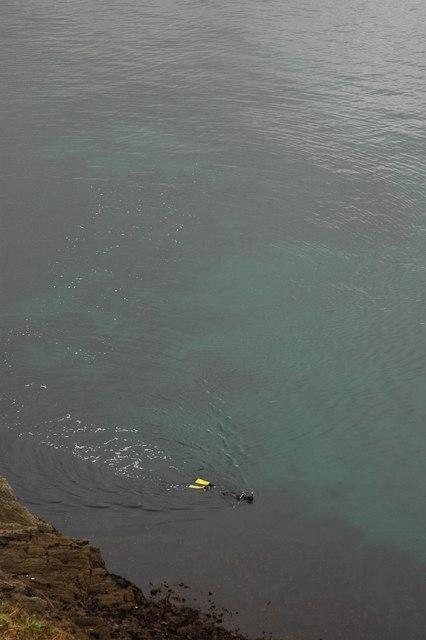 Snorkeler off Pen-a-maen