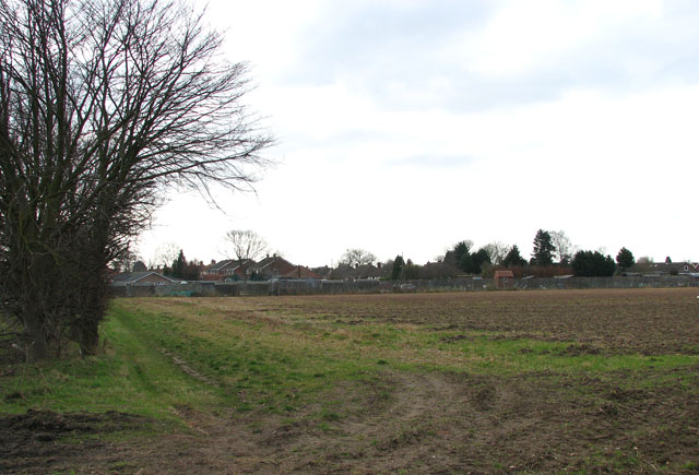Allotments beside the A140