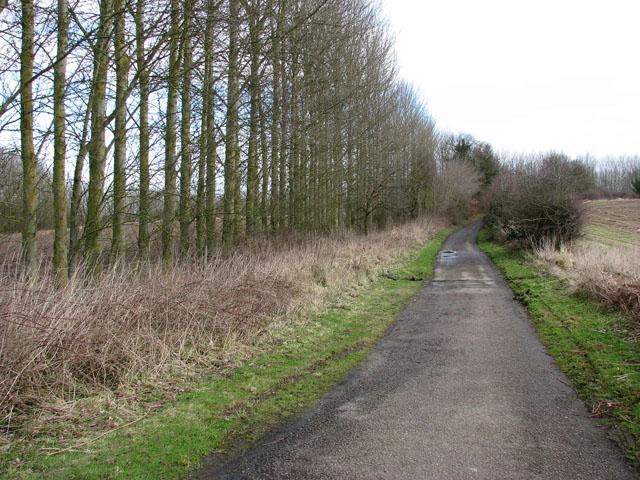 This way to Horsham St Faith