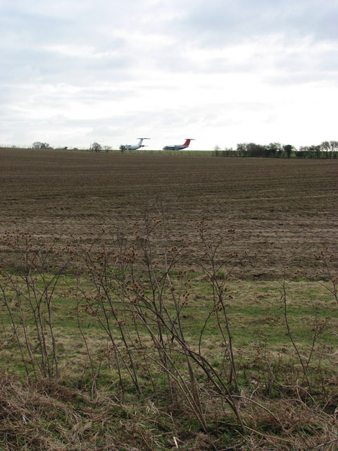 View across a field