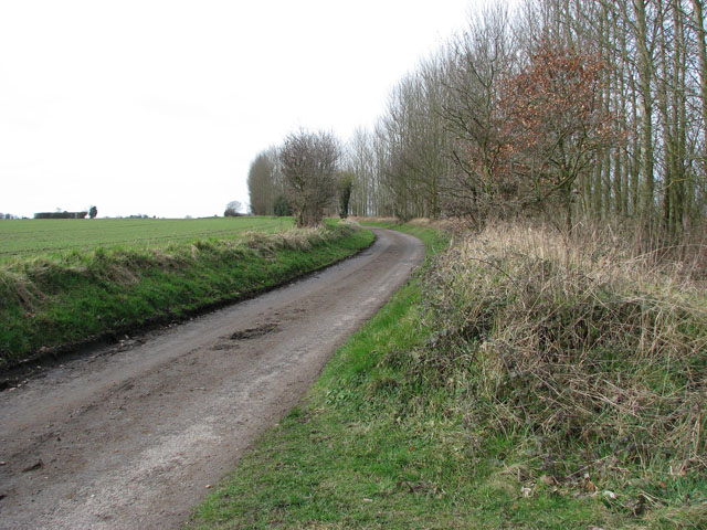 View west along cycle path