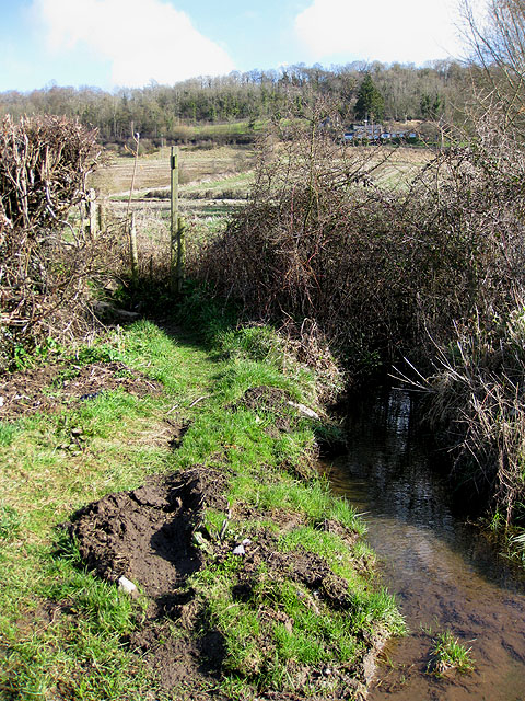 Brook draining from Common Hill