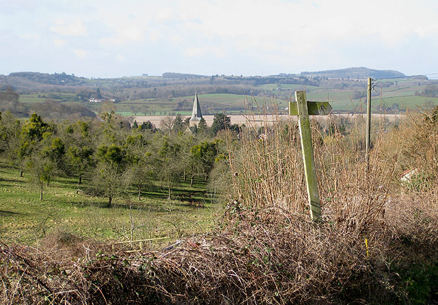 View towards St. Mary's Church, Fownhope