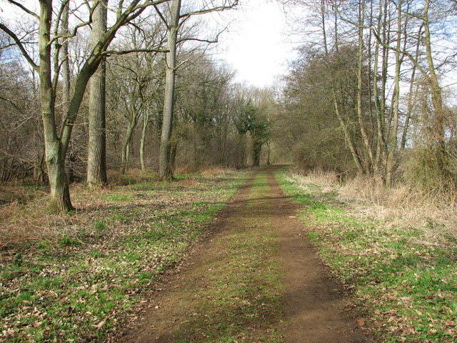 Path on the northern edge of Hevingham Park
