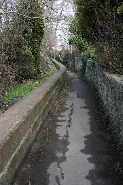 Roughmoor path, Taunton.
