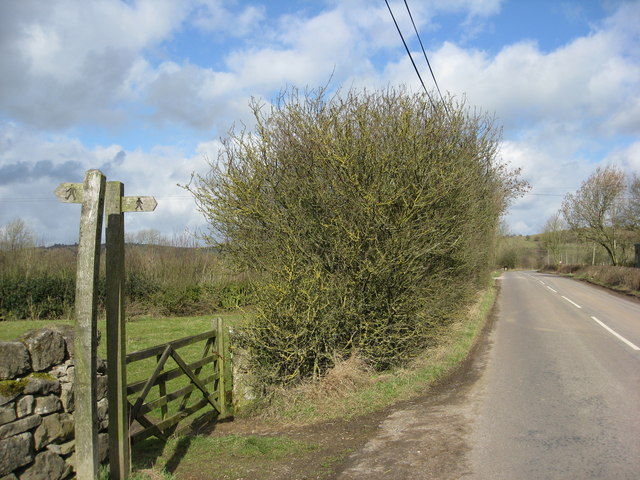 Footpath crosses the road to Brassington