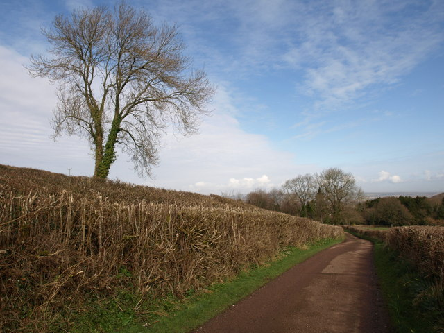 Farm road, Hurley's Farm