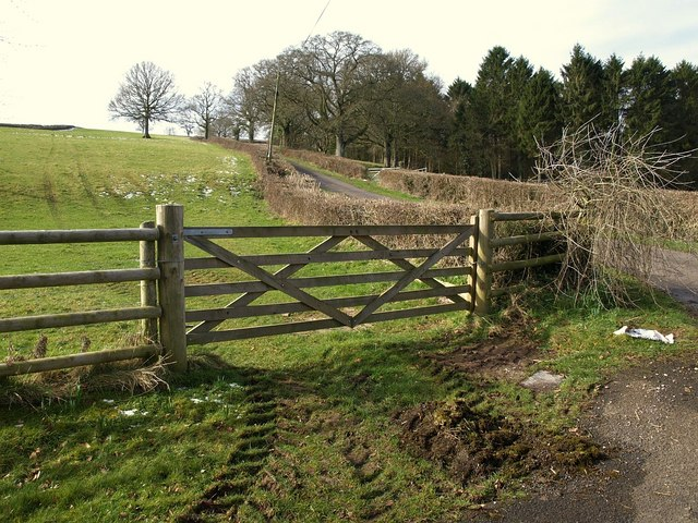Gate, Old Combe Hill