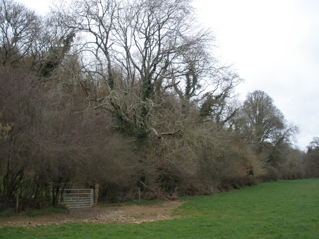 West Wood, near Blinsham