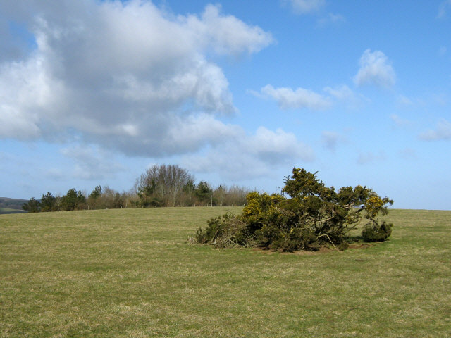 Summit of Broomfield Hill
