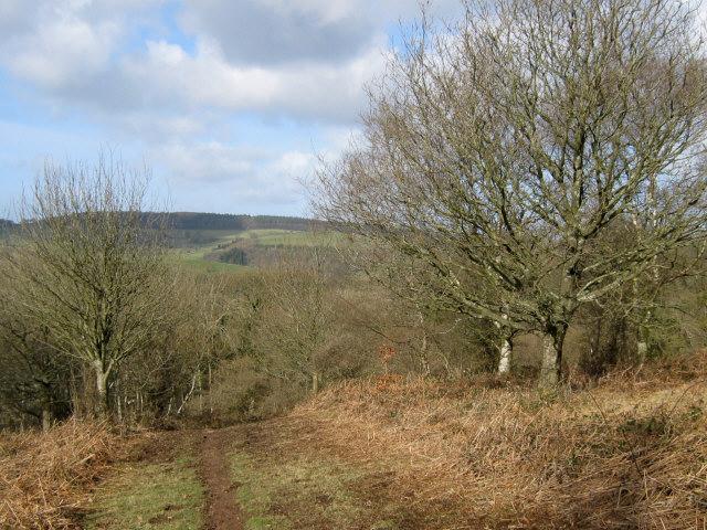 Track on Broomfield Hill