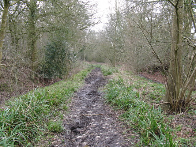 Old House Lane bridleway