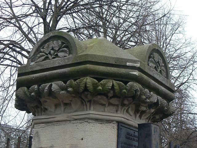 Elm Avenue gatepost - Beech?
