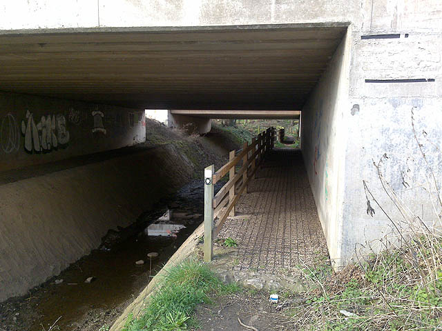 A Path Under The A50
