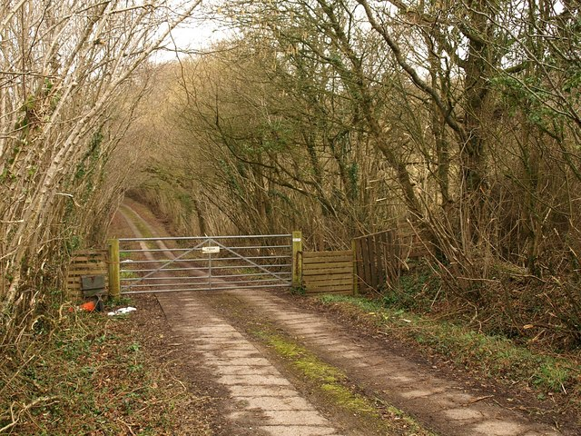 Track from Whitford Hill