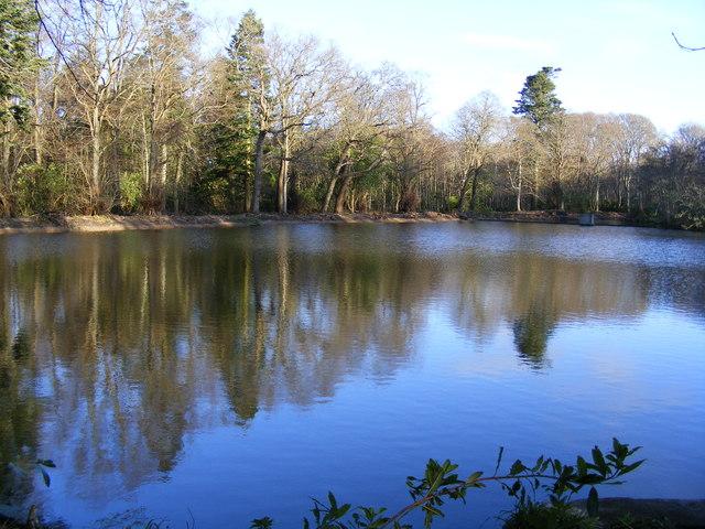 Pond near Cullen House