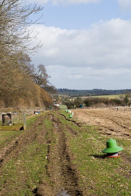 Footpath approaching Werstfield Farm, Cheriton