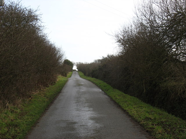 Road south-east of Nant Cottage