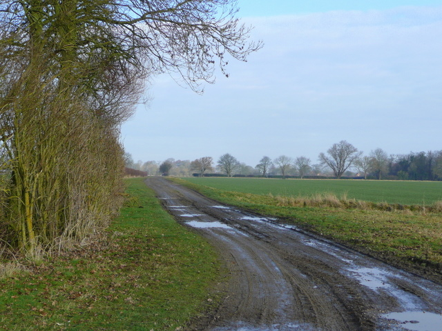 Fenland track
