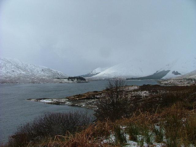 Shoreline on Loch Cluanie