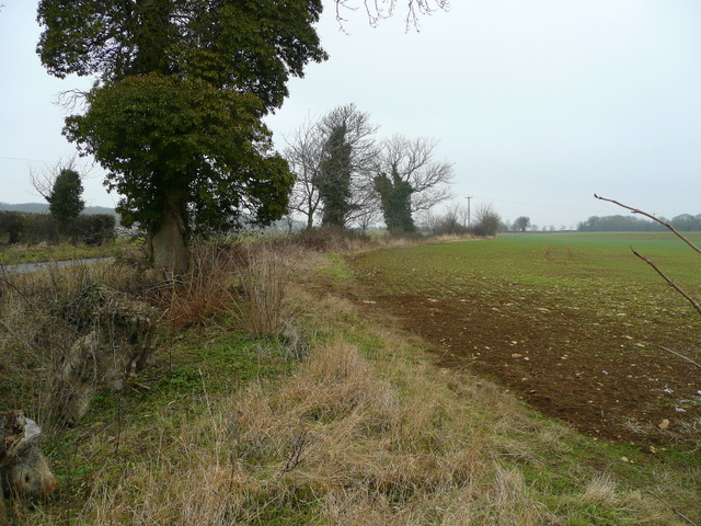 Arable land west of Upton