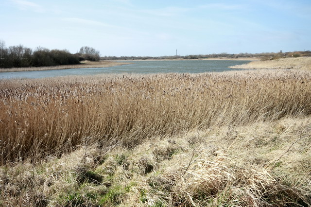 Marton Mere, Reedbeds and Blackpool Tower
