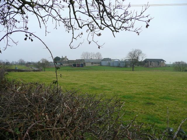 Model Farm, Upton