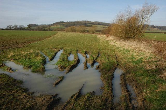 Farmland near Dumbleton