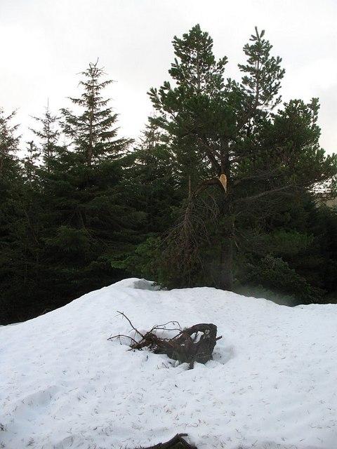 Snow drift, Kilbo
