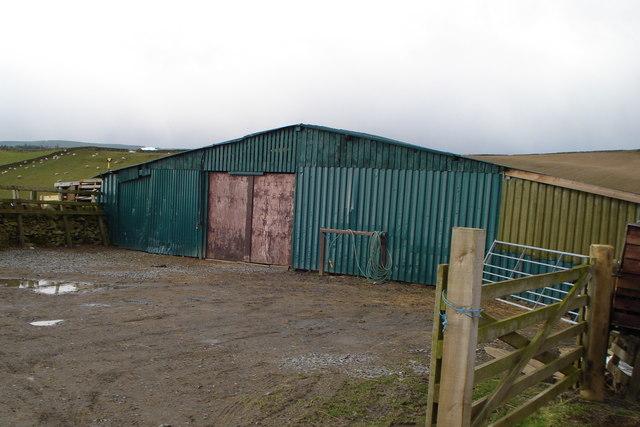 Enclosed sheep handling facility at Winkston Hill farm