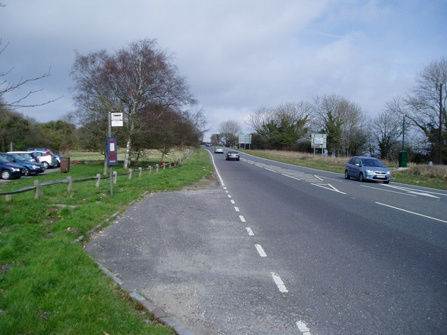Bus stop, south approach to Bury Hill (A29)