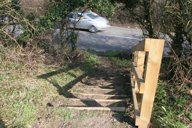 Steps to Dead Lane