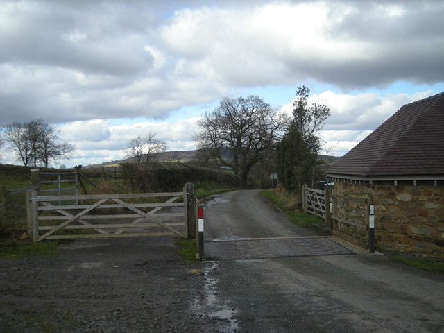 Cattle Grid at Cleeton St. Mary