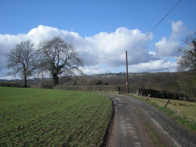 Lane to Ingardine