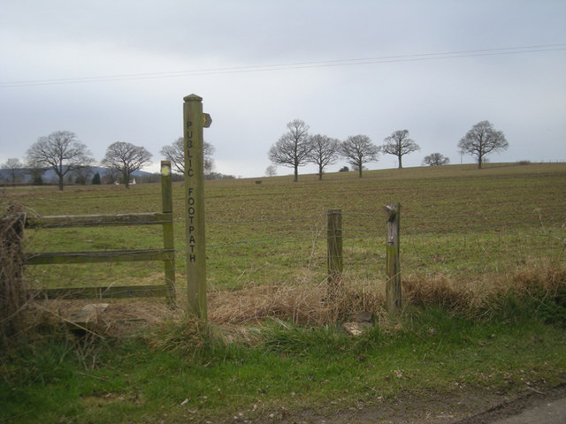 Footpath on Knowle Hill