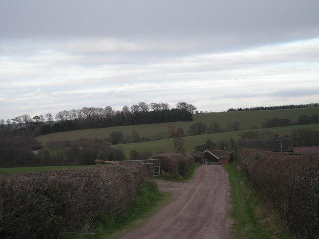 Drive to Winnal Farm