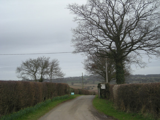 Driveway to Severn Lodge