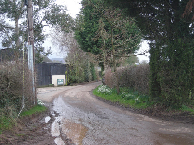 Lane to Hardwick