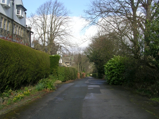 Beechwood Grove - Kings Road