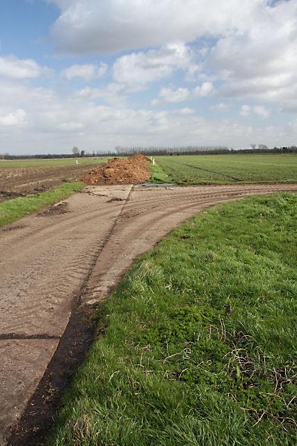 Track on Isleham Fen