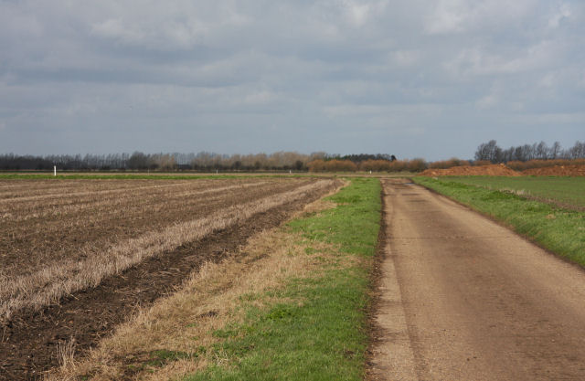 Farm track on Isleham Fen