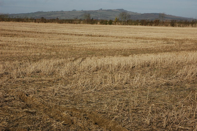 Stubble field near Dumbleton