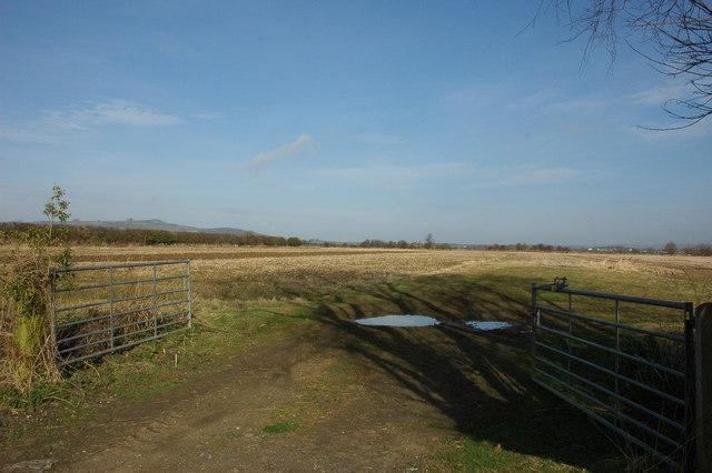 Gateway to a field, Dumbleton